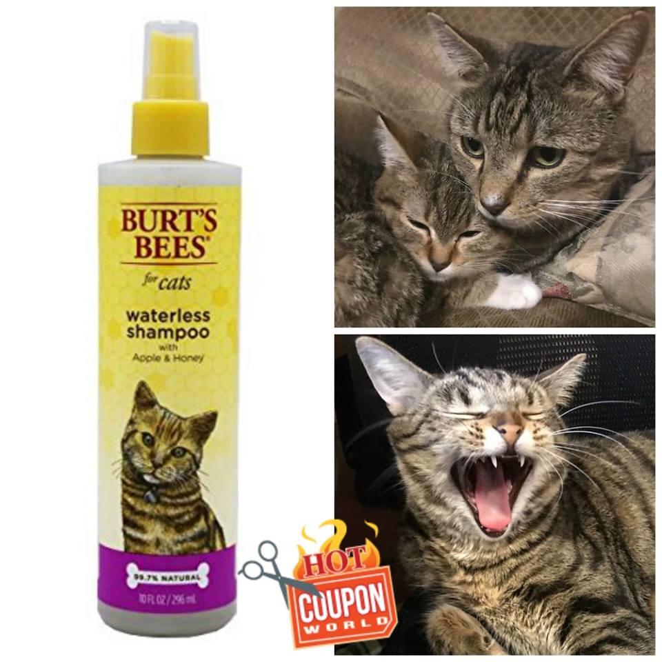 Burt's Bees Cat Shampoo on Amazon
